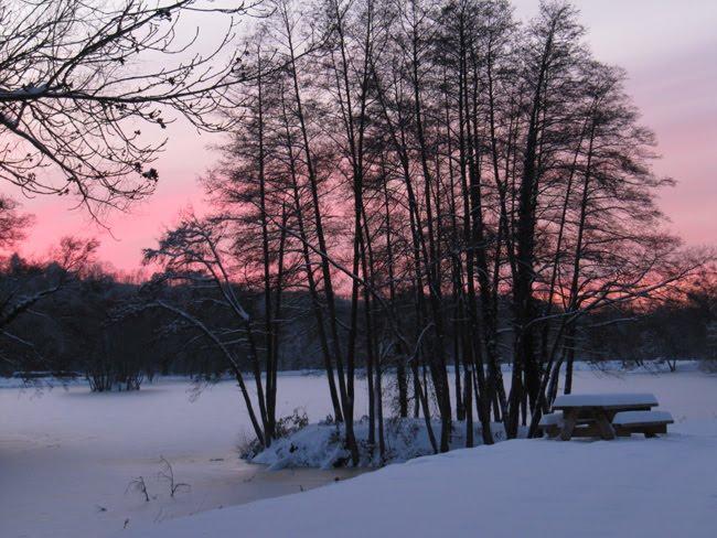 Coucher de soleil sur l'étang gelé %25C3%25A9tang%2B%252811%2529