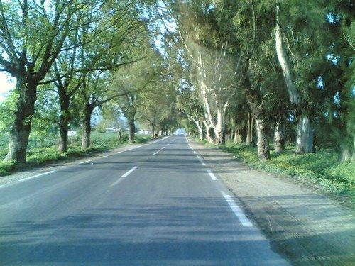 صور لمدينة سكيكدة الجزائرية 7842718