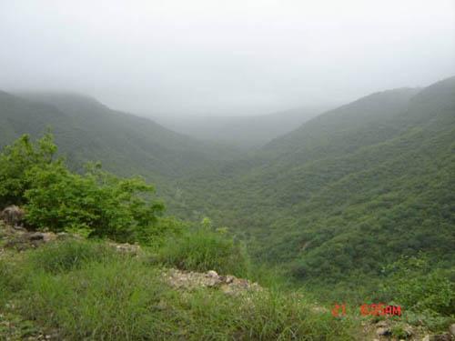 صلالة........ مدينة الخضراء ف وقت الخريف Abofahad