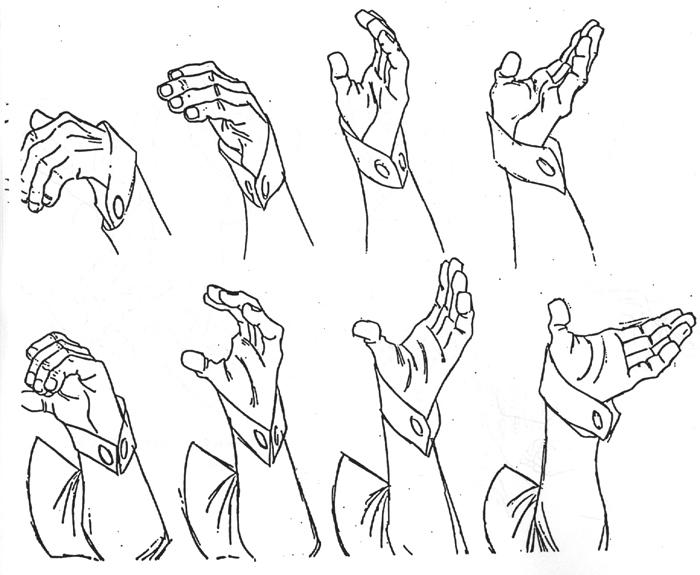 Sala de estudos de Anatomia- Mãos Hands6