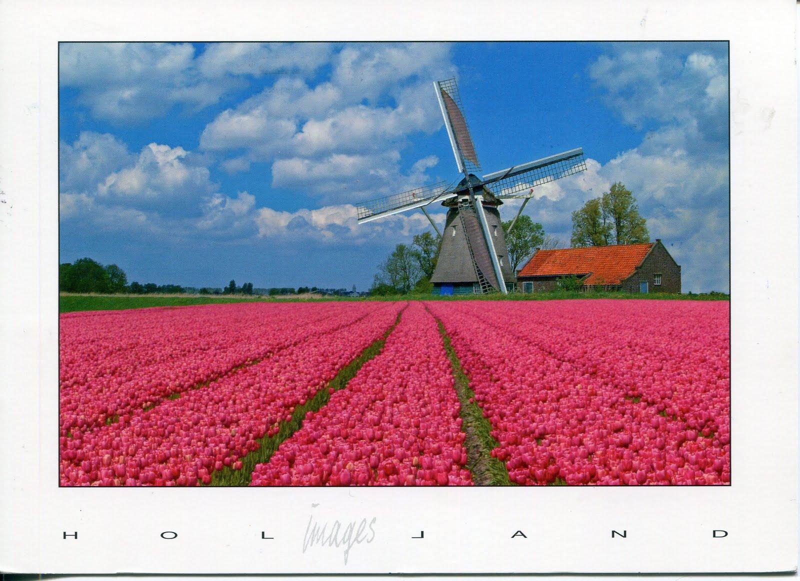 Holandija J-nl-windmill338