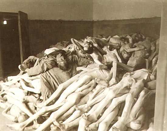 photos des camps de la mort, des ghettos, des prisonniers, des gardiens... Auschwitzcorpses