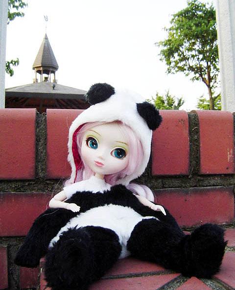 Liste de tous les modèles de Pullip Panda