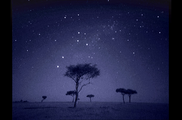 African savannah at night (Martin Dohrn) Africa_night_06