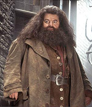 Clase de Cuidado de Criaturas Magicas Hagrid3