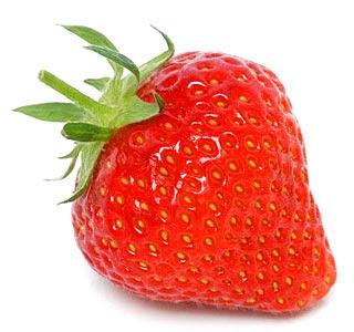عمليات خدمة هامة لنبات الفراولة Strawberry
