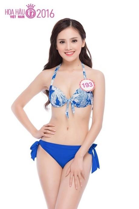 (TỒNG HỢP) Những ứng viên sáng giá cho vương miện Hoa hậu Việt Nam 2016 1_123798