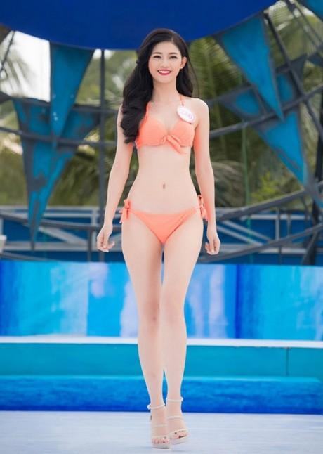 (TỒNG HỢP) Những ứng viên sáng giá cho vương miện Hoa hậu Việt Nam 2016 2_238834