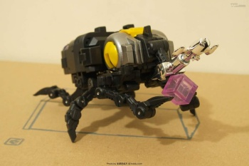 [Fanstoys] Produit Tiers - Jouet FT-12 Grenadier / FT-13 Mercenary / FT-14 Forager - aka Insecticons - Page 2 5Egf8y2P