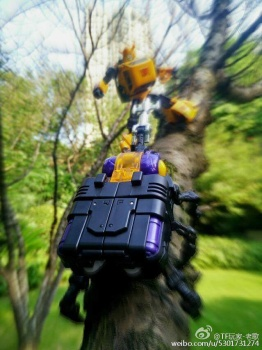 [Fanstoys] Produit Tiers - Jouet FT-12 Grenadier / FT-13 Mercenary / FT-14 Forager - aka Insecticons - Page 2 Gijlyz49