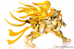[Comentários] Saint Cloth Myth EX - Soul of Gold Aiolia de Leão - Página 9 J3Fc8nr6