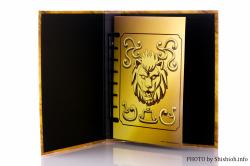 [Comentários] Saint Cloth Myth EX - Soul of Gold Aiolia de Leão - Página 9 YJ0J6Zj6