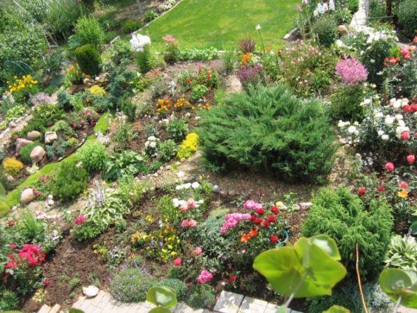 Дачники, флористы, огородники сюда!!! 02-rockery