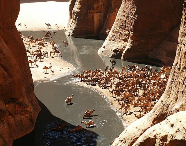 Las maravillas del desierto del Sahara Guelta-archei-sahara-e1397225637711