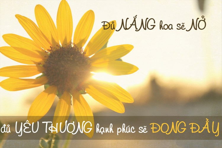 Tập Truyện Ngắn Tình cảm: Đi Bước Nữa    Top-nhung-cau-noi-hay-ve-tinh-yeu-hanh-phuc-tho-mong-dang-nguong-mo-19