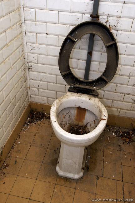 Idem que petit bout ! Gign-toilettes-abandon-1
