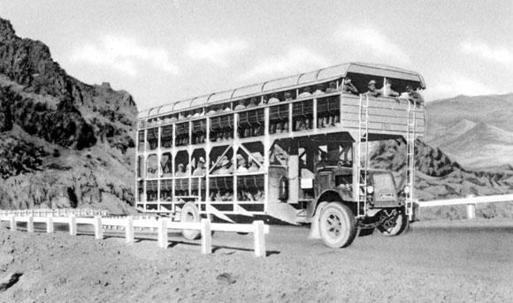 USA Construction du barrage Hoover Bus
