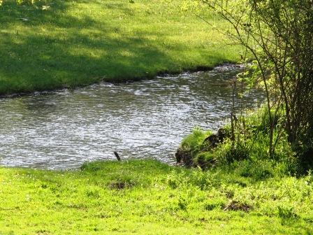 - Ruta por las pesquerías Reales (Segovia). IMG_4292