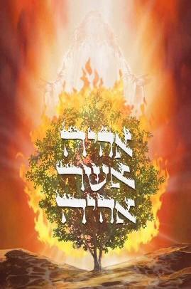 Титулы Бога - Страница 4 Burning-bush