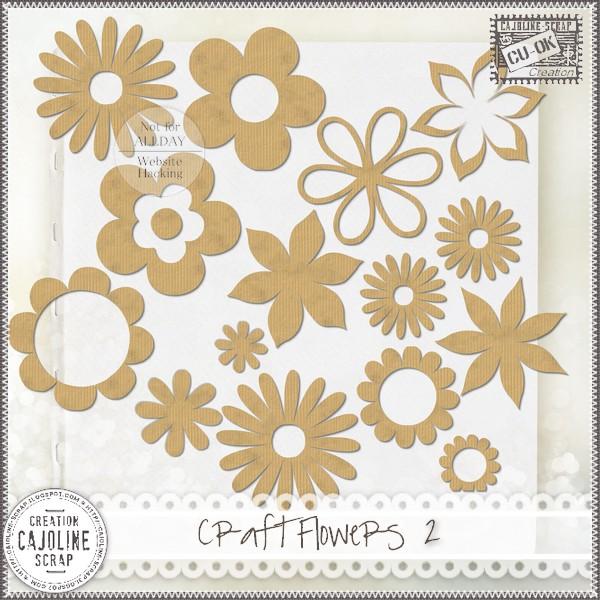 CRAFT FLOWERS 2 - CU Cajoline_craftflowers2_cu