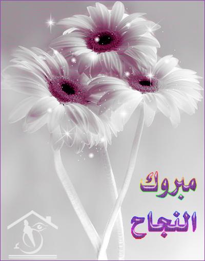 يا ريت كلنا نبارك من قلبنا لأخت غاليه علينا كلنا PkA64495