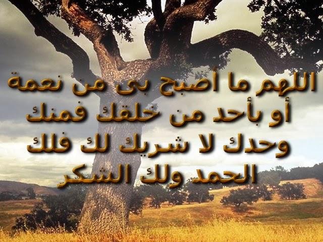 تحميل 220 صورة إسلامية لصفحات الفيس بوك وانستقرام وجوجل بلس بملف واحد Calli91