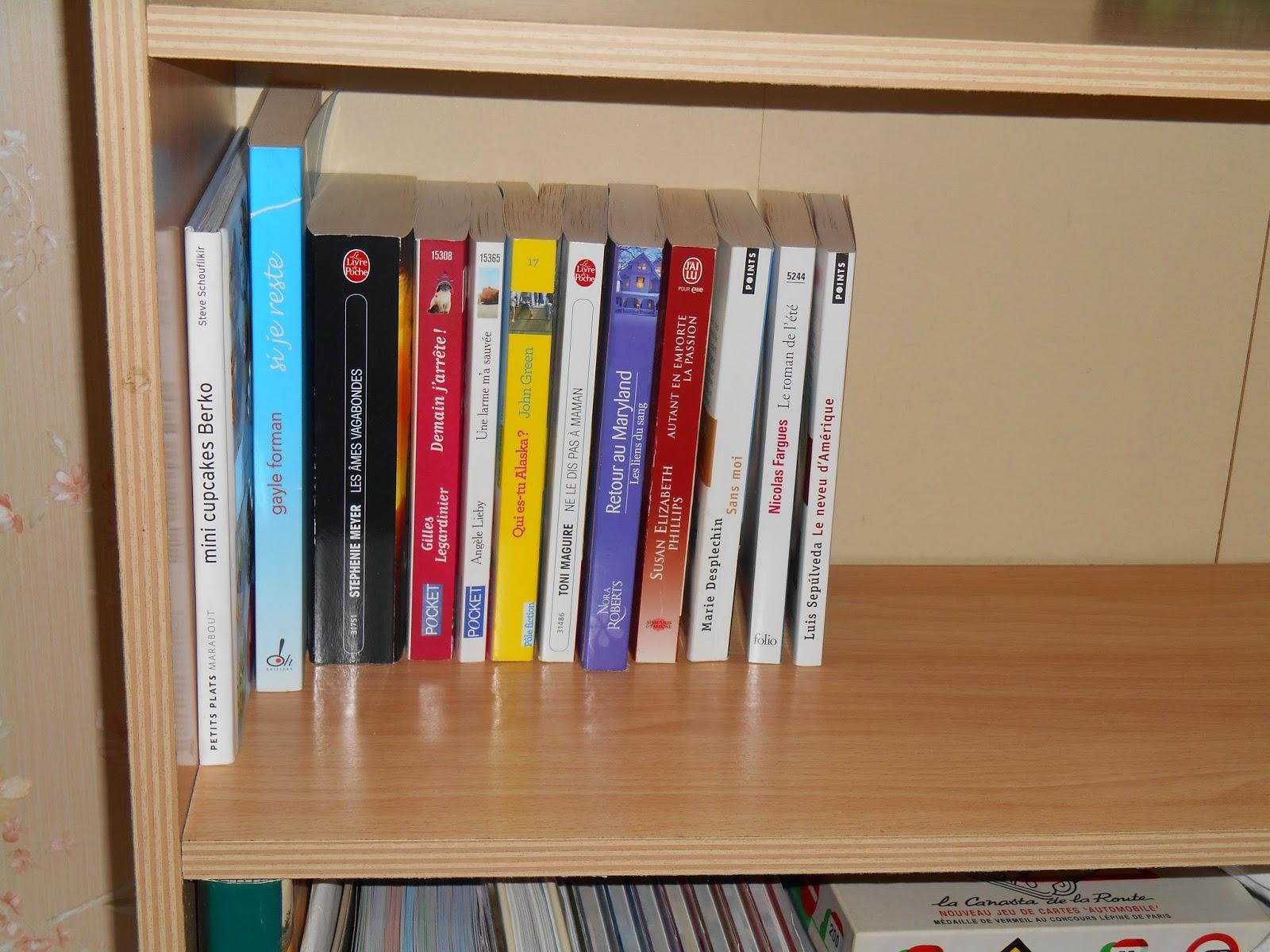 Vos bibliothèques en photo  DSCN0055