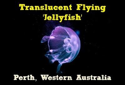 Translucent Flying 'Jellyfish' - Perth, Western Australia  Jellyfishcryptid