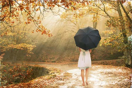 Tiếng thơ - Cây nhà lá vườn  - Page 9 12841285120787-mua-thu-cho-em2-jpg.243