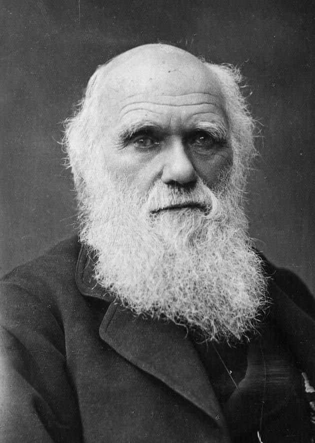 Charles Darwin Darwin