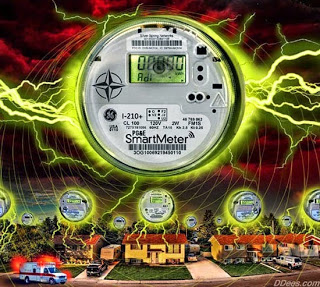 Top Biochemist Calls to Abolish Smart Meters, WiFi in Schools, and Baby Monitors  SmartMeterInvasion_550x493