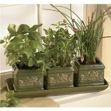 عمل حديقه اعشاب بالمطبخ بنفسك Images1