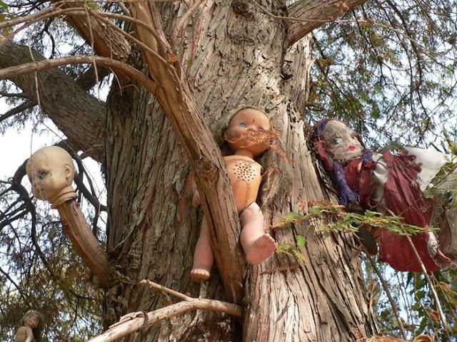 رعب على ارض الواقع في  جزيرة الدمي المشوهه  Island-of-dolls-2%5B2%5D