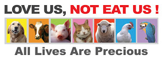 Stop Eating Your Friends! (Go Vegan)  Many-Hindus-worldwide-are-Vegetarian