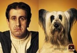 Gedeelde smart Hond%2Bbaas%2B%25283%2529