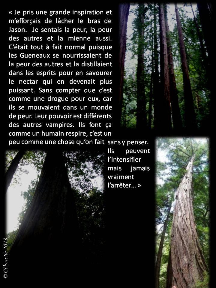 AB Story, Cirque:T24 ep7 p 51/E8 p 52/+E9 p 52 - Page 7 Diapositive7