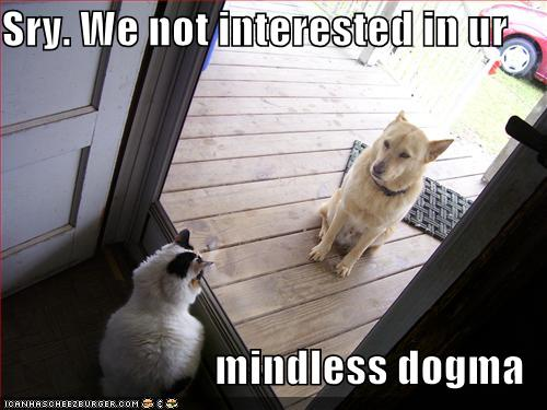 Pets Funny-pictures-cat-greets-dog-at-door