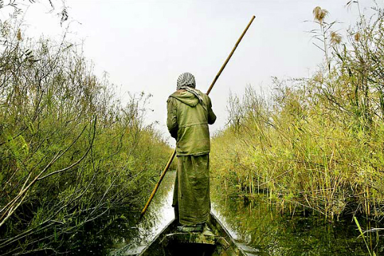 Could Iraq Become an Eco-Tourism Destination?  Marsh