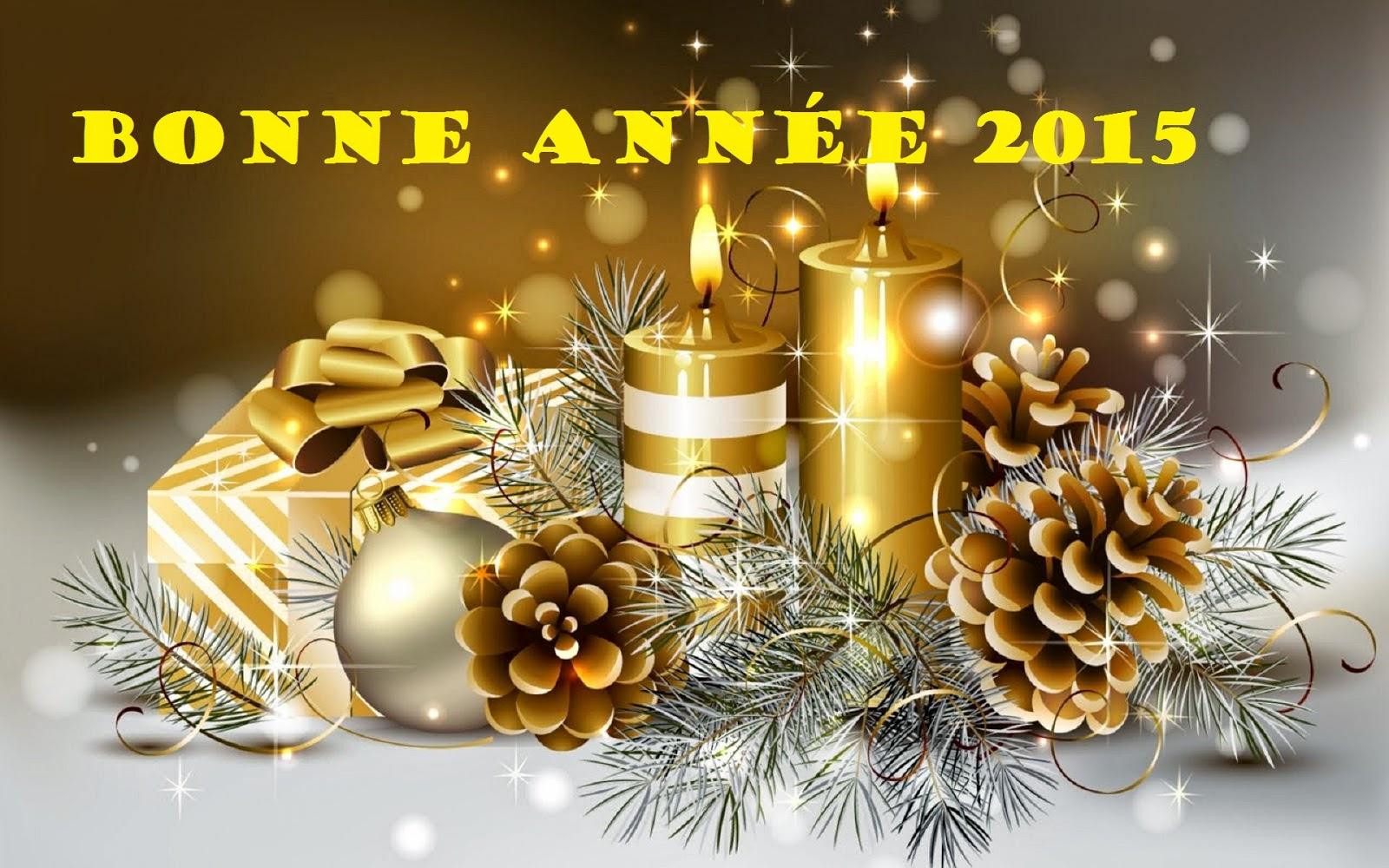 MEILLEURS VOEUX POUR 2015 Happy-new-year-shop_287917