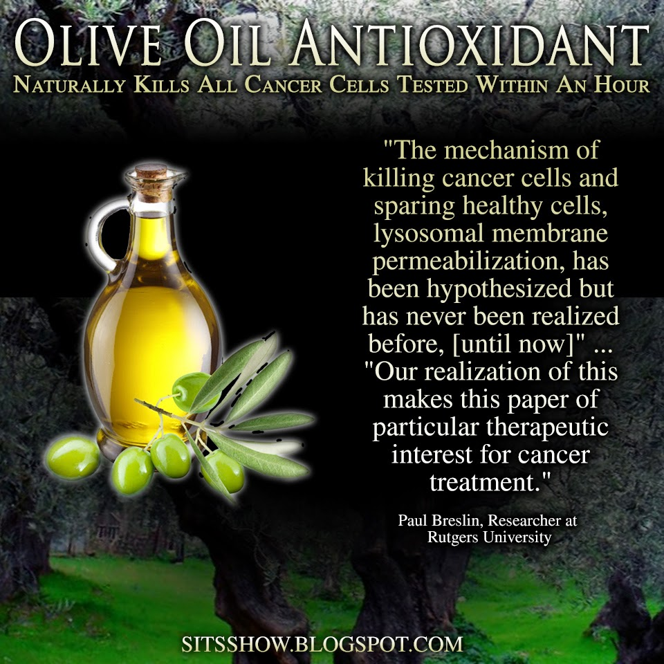 Olive Oil Antioxidant Naturally Kills All Cancer Cells Tested Within An Hour  Olive%2BOil%2BAntiOxident%2BMEME