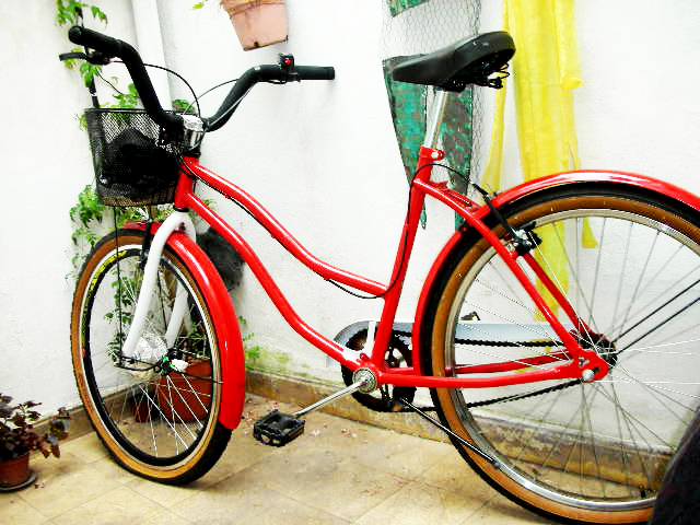 Presenta tu bici eléctrica DSCN7842