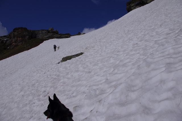 RANDOCABO sur la Via Alpina IMGP0059