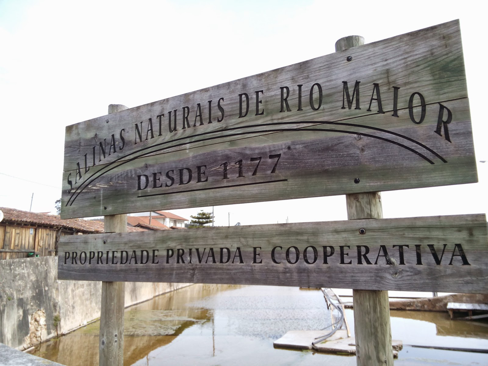 Day Off - Bucelas / Rio Maior / Bucelas IMG_20150211_112816