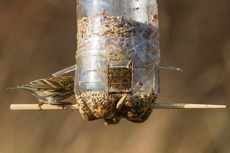 Comedero para aves casero  _AA_7561