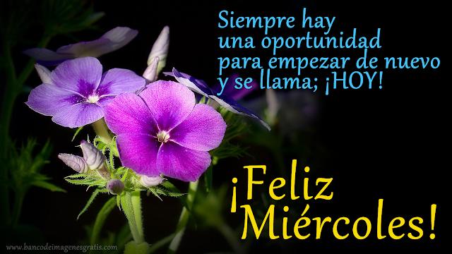 Buenos días, buenas tardes ó buenas noches ... Flores-con-mensaje-de-feliz-mi%C3%A9rcoles-compartir