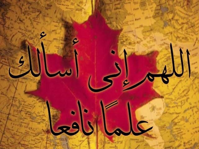 تحميل 220 صورة إسلامية لصفحات الفيس بوك وانستقرام وجوجل بلس بملف واحد Calli89