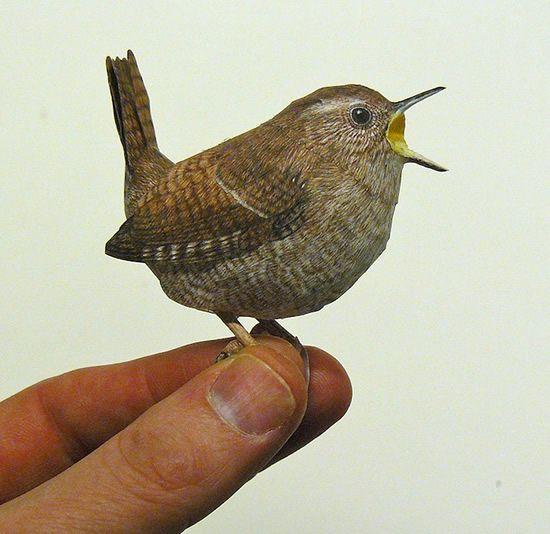 فنان يصنع طيور من الورق واقعية بشكل لا يصدق  Papercraft-birds4%5B1%5D