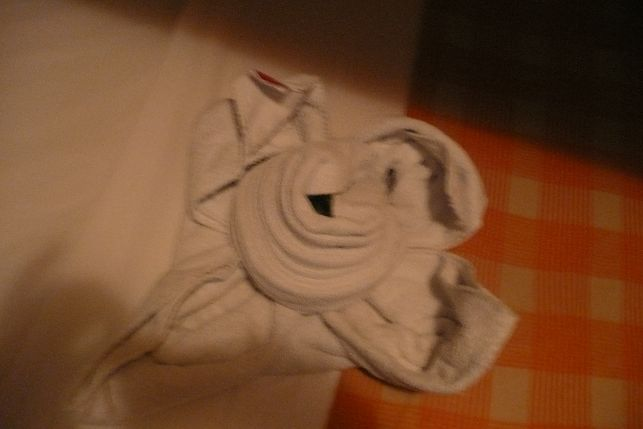 Umjetnost preslagivanja ručnika P1050480