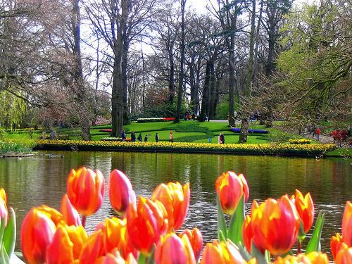 Bienvenidos al nuevo foro de apoyo a Noe #250 / 28.04.15 ~ 30.04.15 - Página 3 Paisajes-a-Holanda