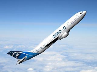 Gravity Does Not Exist! Airbus_zero_g